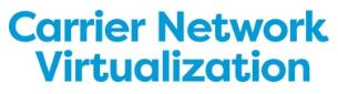 Carrier Network Virtualization